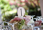 Wedding Table Number and Instagram signage