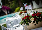 Wedding Table Name in Flamenco style with Bull