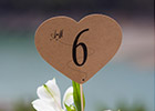 Vintage-style Wedding Table Number & Place Card